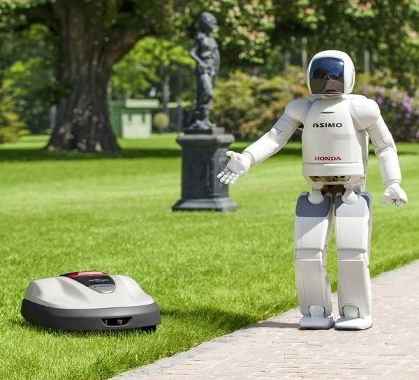 Robots Asimo et Miimo