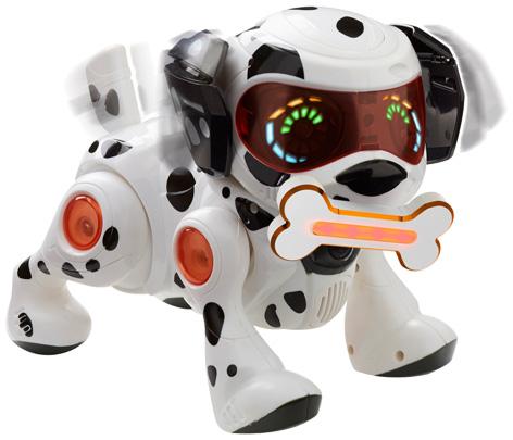 teksta-dalmatien-puppy