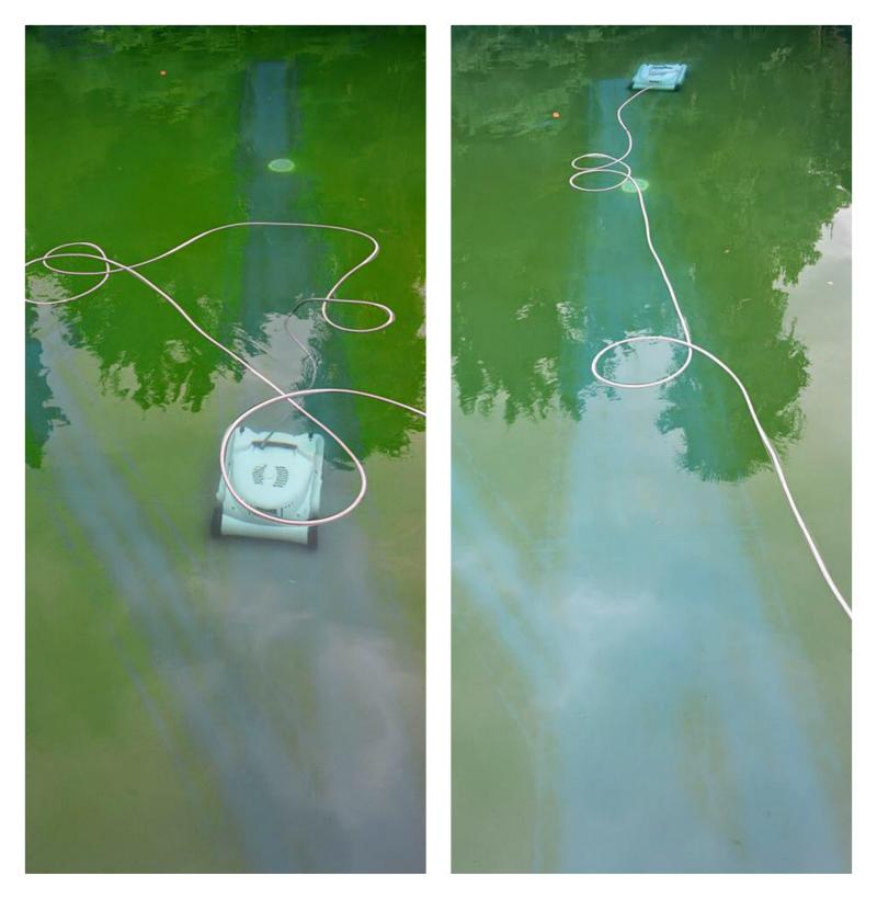 KWADOO - Nettoyage algues fond de piscine