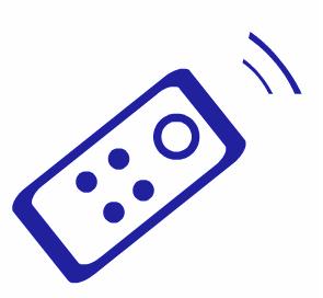 Télécommande e-cleaner amipool