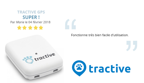 avis-marie-gps animaux compagnie tractive