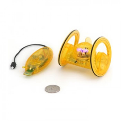 Robot insecte Roller DeskPet TREKBOT Cristal
