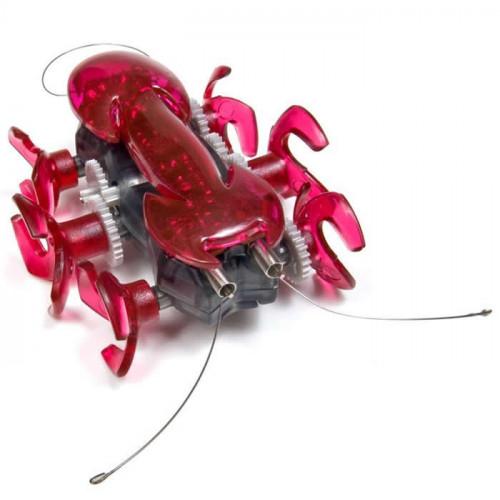 HEXBUG Ant Rouge