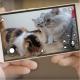 Pawbo+ caméra interactive pour animaux de compagnie