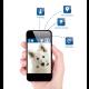 Wékiki GPS pour animal de compagnie