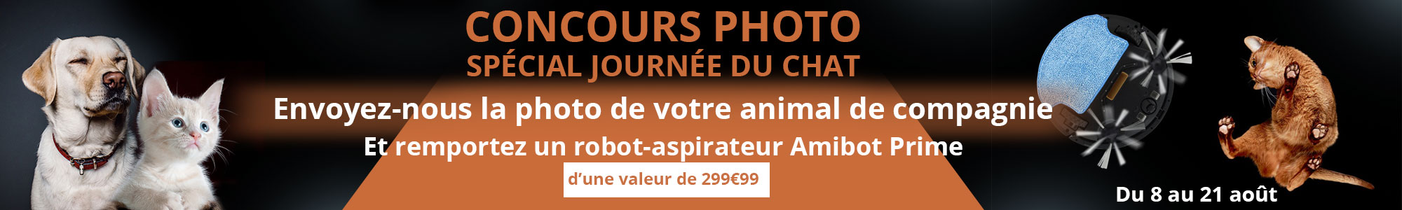 Concours photo chien chat amibot