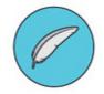 Dolphin e10 maytronics - Léger