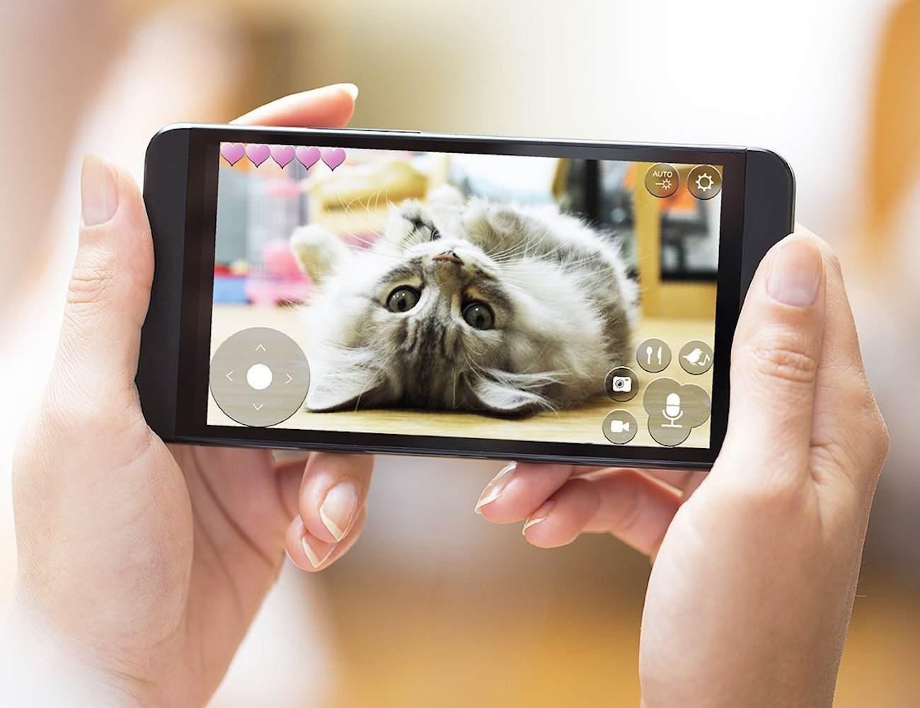 pawbot - caméra intéractive animaux de compagnie
