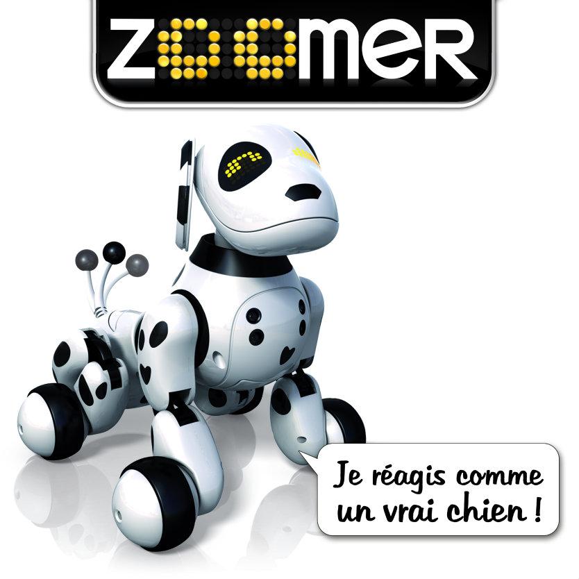zoomer dalmatien 2.0