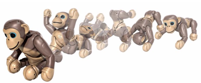 Chimp Zoomer - Accrobaties