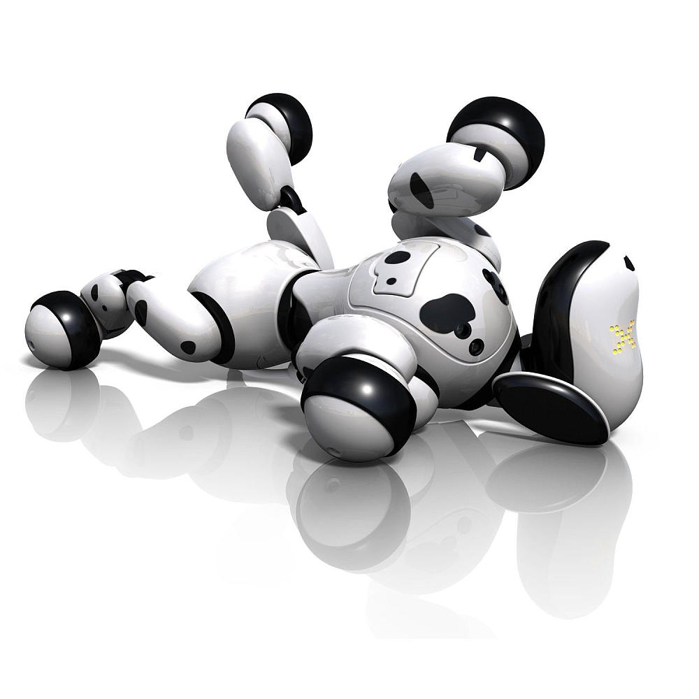 zoomer robot dalmatien roulade