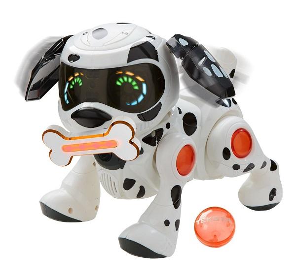 teksta puppy dalmatien