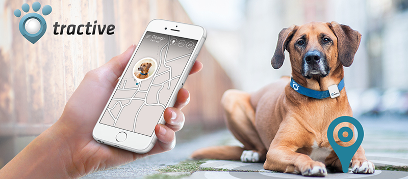 tractive gps animaux