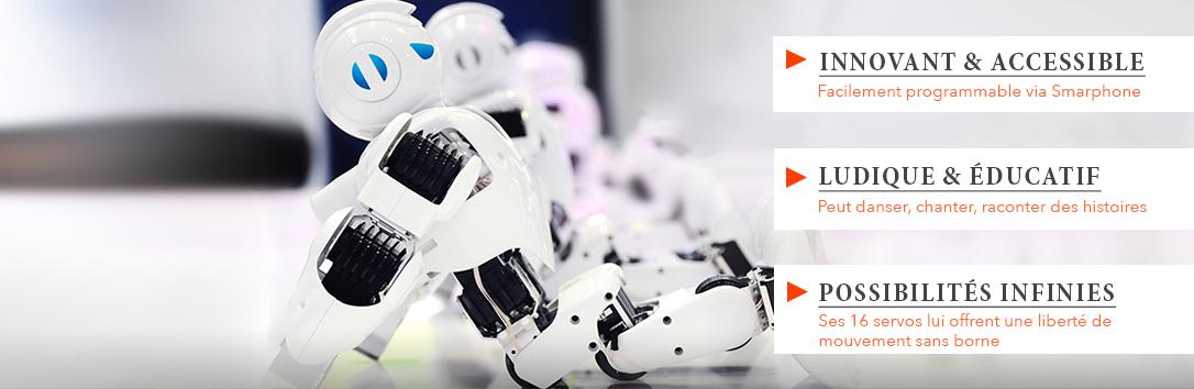 Robot Humanoide ALPHA 1S