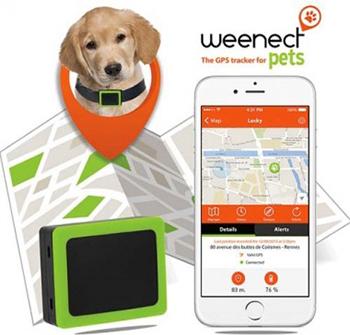 WEENECT Pets, application et carte de localisation