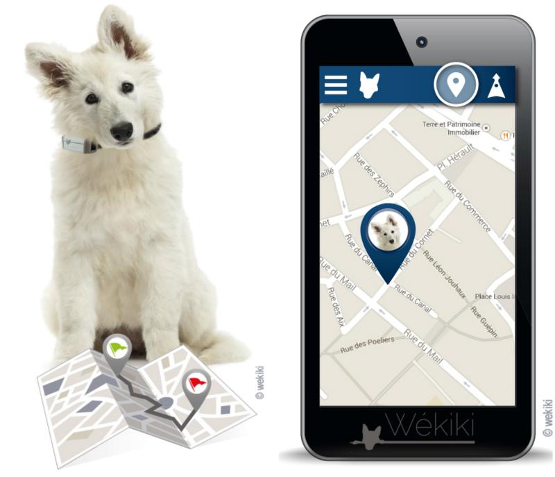 wékiki GPS animaux de compagnie